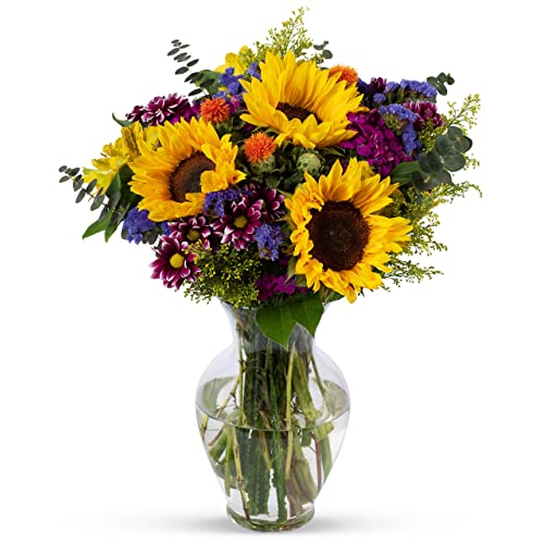 Benchmark Bouquets Flowering Fields With Vase Fresh Cut Flowers