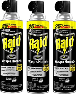 Raid Wasp and Hornet Killer, 17.5-Ounce (Pack of 3)