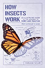 How Insects Work: An Illustrated Guide to the Wonders of Form and Function from Antennae to Wings