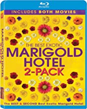 Best and Second Best Marigold Hotel