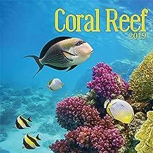 Coral Reef 2019 Calendar