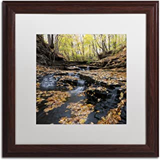 Lakeview Autumn Falls in White Matte and Wood Frame Artwork by Kurt Shaffer, 16 by 16-Inch