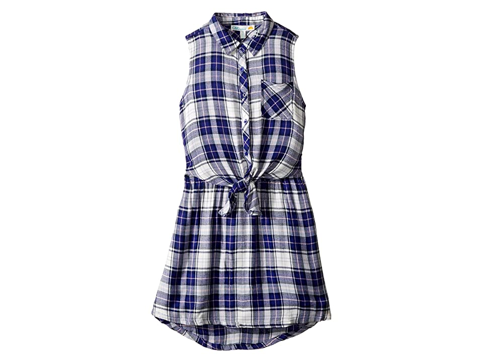 C&C California Kids Yarn-Dye Woven Dress (Little Kids/Big Kids) (Navy) Girl
