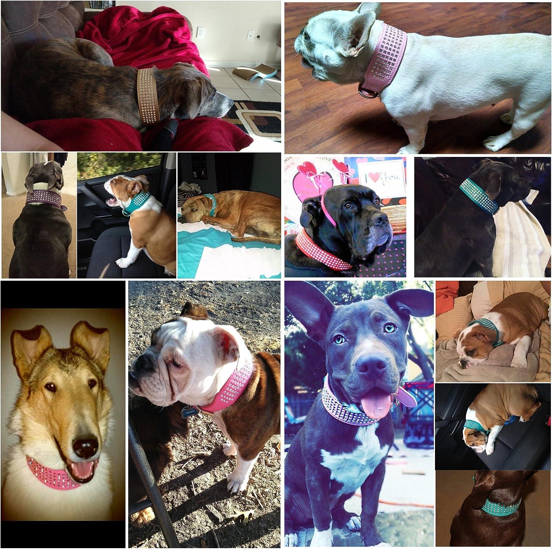 7.Beirui Rhinestones Dog Collars
