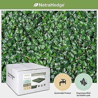 NatraHedge Artificial Boxwood Hedge Mat 20