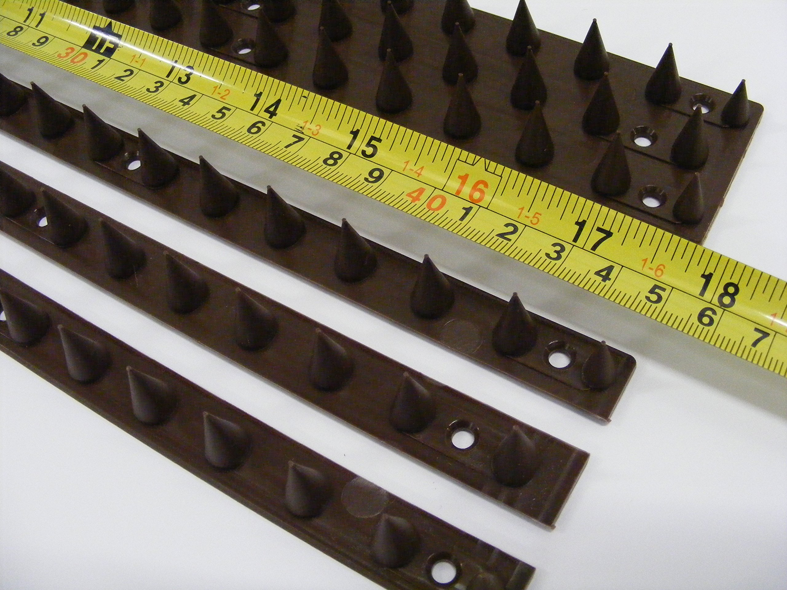 the Cactus Pinchos de Pared para Valla (50 Unidades, 22, 5 m a 67, 5 m), Color marrón: Amazon.es: Bricolaje y herramientas