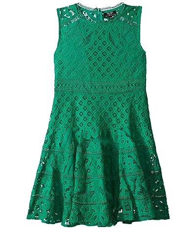 Bardot Junior Elise Lace Dress (Big Kids) (Green) Girl