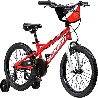 Best 18 inch boys bike with training wheels Reviews