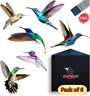 Hummingbird Window Clings - 6 x Anti Collision Decals to Prevent Bird Strikes on Doors & Windows - Static, UV Resistant & Non Adhesive Vinyl Cling - Deterrent Decal & Glass Decor to Alert Birds (6)