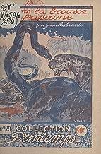 Dans la brousse africaine (French Edition)