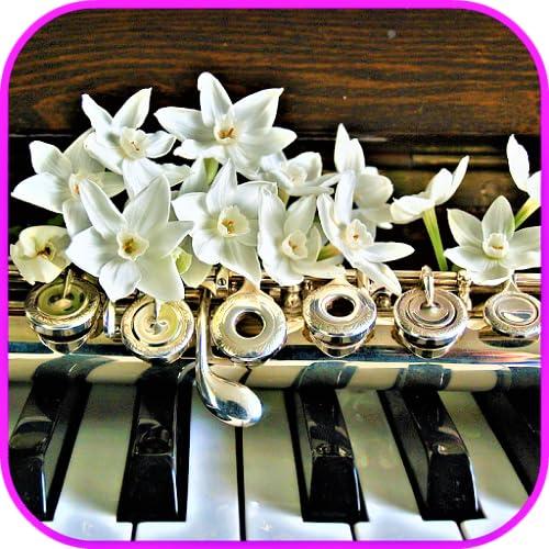 Musical instrument Wallpaper