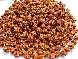 plastic rudraksha beads