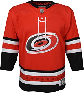 best service c39c8 407c4 Carolina Hurricanes NHL NHL Youth Premier Blank Red Jersey