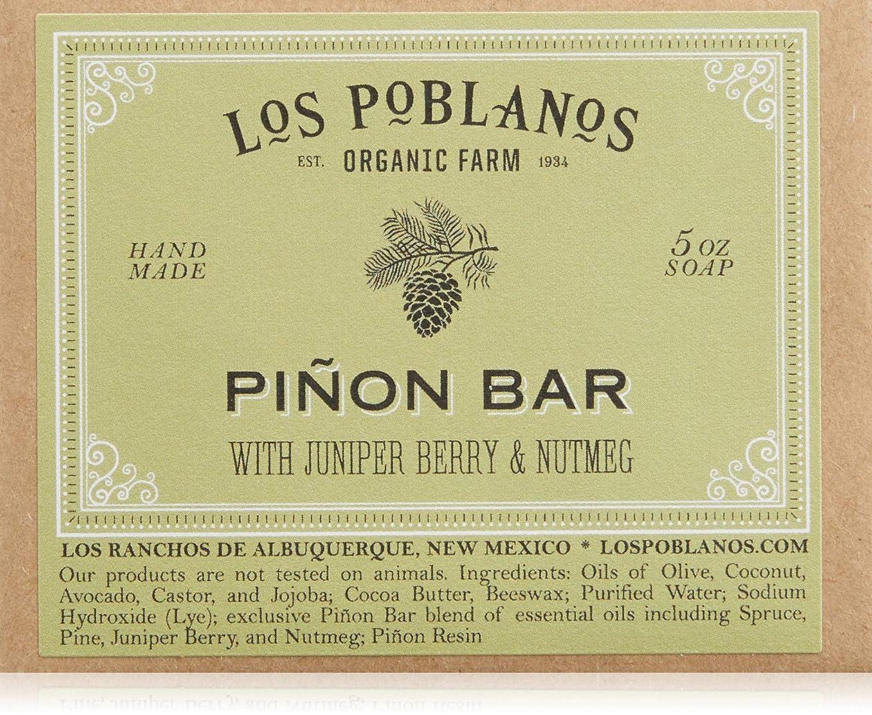 野球突き出す些細LOS POBLANOS(ロス ポブラノス) ピニョン バー 130g