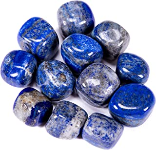 Bingcute 1/2lb Bulk Large Natural Lapis Lazuli Tumbled Polished Stones From Afghanistan 1