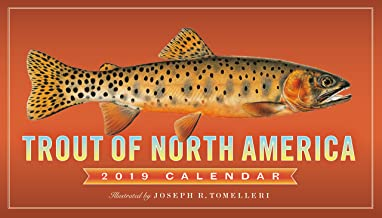 Trout of North America Wall Calendar 2019