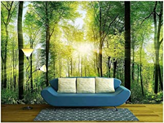 Best deciduous forest wallpaper Reviews
