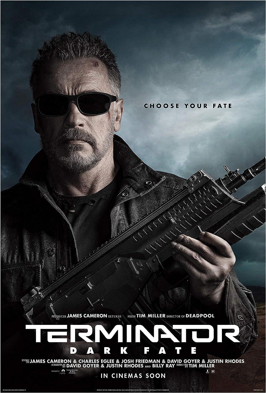 Amazon.com: Fullfillment Posters Terminator Dark Fate Movie Poster Glossy  Print Photo Wall Art Linda Hamilton, Arnold Schwarzenegger, Mackenzie  DavisSizes 8x10 11x17 16x20 22x28 24x36 27x40#2 (27x40 inches): Posters &  Prints