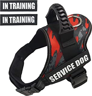 great dane service dog vest