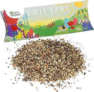 Wilde Weide: 100g Premium Wildblumensamen Mischung mehrjährig und einjährig - Insektenfreundliche Blumenwiese Samen für Bienen - Blumensamen für eine bunte Bienenwiese - Wildblumen Samen von OwnGrown