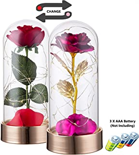 Beauty and The Beast Rose Kit, Pink Gold Foil Rose and Red Silk Rose - That Lasts Forever in a Glass Dome with LED Lights on 24K Gold Plated Metal Base for Home Decor Wedding Anniversary