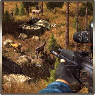 Wild Animal Survival Shooter Simulator: Jungle Hunting Games Free For Kids