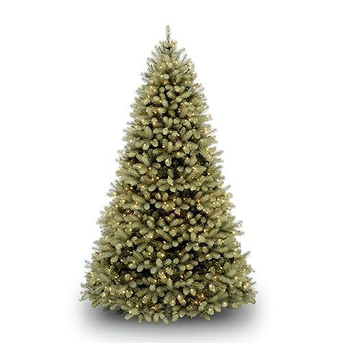 Fresh Christmas Trees Near Me.Fresh Christmas Trees Amazon Com