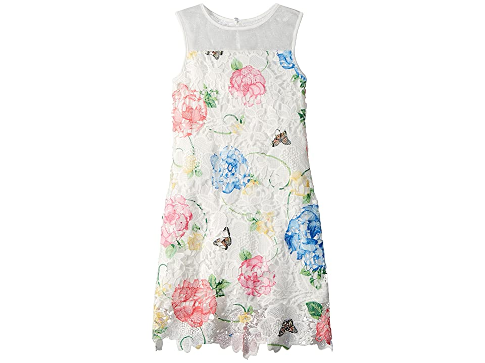 Us Angels Printed Lace Sheath Dress (Big Kids) (Multi) Girl