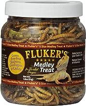 Best lizard food online Reviews