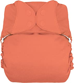 bumGenius Big: Baby and Toddler One-Size Pocket Cloth Diaper - Fits 35-70 Pounds (Kiss)