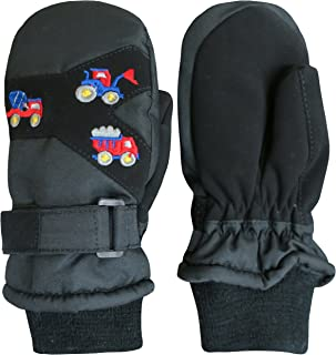 Little Kids Thinsulate Waterproof Embroidered Ski Snow...