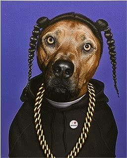Best pets rock art canvas Reviews