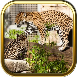 More Zoo Jigsaw Puzzle Games