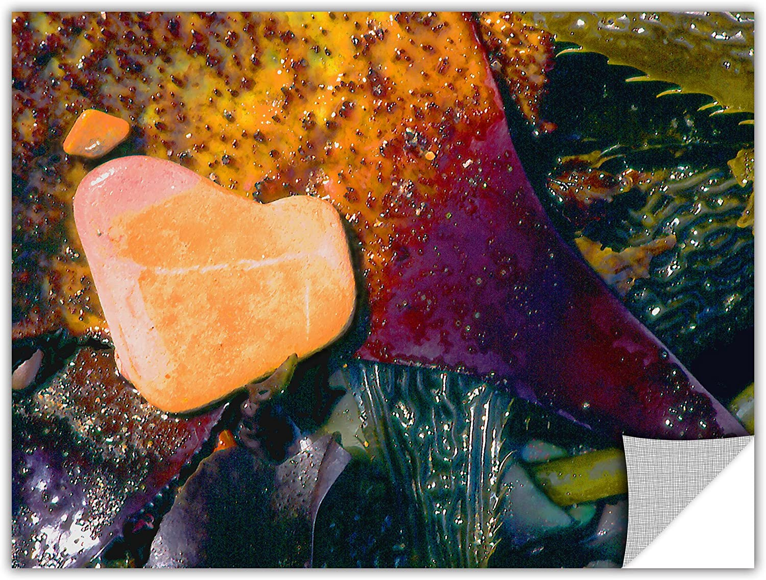 ArtWall ArtApeelz Dean Uhlinger Pebbles on Kelp Removable Wall Art Graphic, 14 by 18-Inch