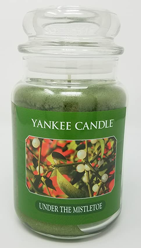 控えめなモナリザ物理学者Yankee Candle Under the Mistletoe Large Jar Candle