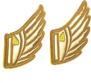 Shwings Lace On Style Gold Foil One Size Fabric Shoe Decoration Charm Wings