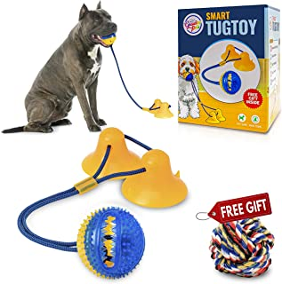 Gnawtee Pets Smart Dog Tug Toy with Double Suction Cups - Durable Teething Toy for Puppies and Stimulating Dog Toy for Agg...