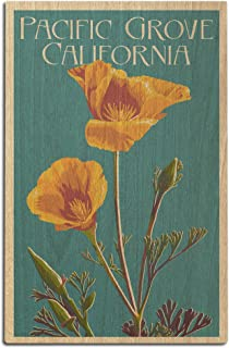 Pacific Grove, California - Poppy - Letterpress (12x18 Wood Wall Sign, Wall Decor Ready to Hang)