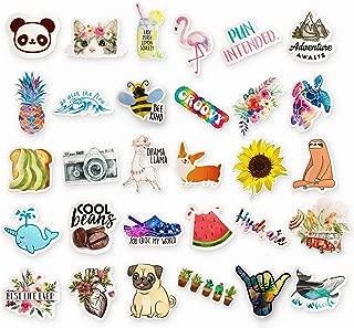 30 Pack Artsy Stickers (Series 1), Cute Water Bottle Stickers Waterproof, Vsco Starter Pack, Glossier Stickers, Girly Sticker Pack, Mountain Stickers, Made in USA