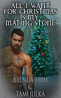 All I Want for Christmas is my Mating Stone: Dark Warrior Alliance Novella, Book 20.5