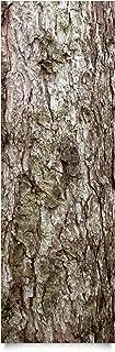 Apalis Klebefolie Holzoptik - Baumrinde - Dekorfolie Holz 50 x 50 cm