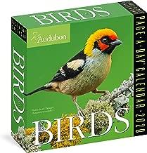Audubon Birds Page-A-Day Calendar 2020