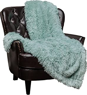 Chanasya Super Soft Shaggy Longfur Throw Blanket | Snuggly Fuzzy Faux Fur Lightweight Warm Elegant Cozy Plush Sherpa Microfiber Blanket | for Couch Bed Chair Photo Props -(60x70)- Aqua Turquoise