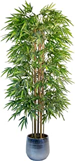 comprar comparacion Maia Shop Bambú Cañas Naturales, Ideal para Decoración de Hogar, Árbol, Planta Artificial (180 cm), Materiales Mixtos