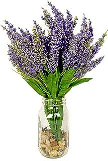 Best river rock lavender water Reviews
