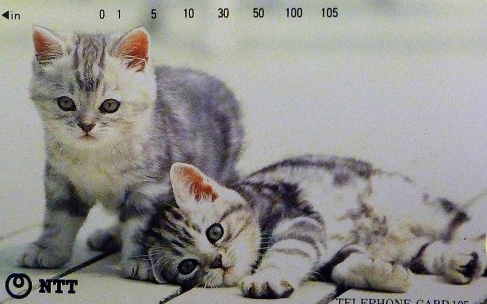 美的与えるコンピューターゲームをプレイするテレホンカード/テレカ 子猫2匹 ② 動物、猫、ねこ、ネコ、仔猫、写真 105度数