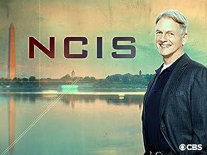 NCIS, Season 15