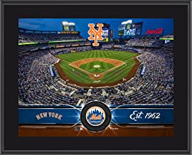 Best stadium new york mets Reviews
