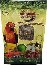 28 parrot diet