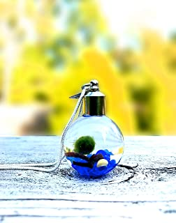 Live Marimo Moss Ball Terrarium Necklace Hand Made Live Plant Green Jewelry Gift - Blue Ocean